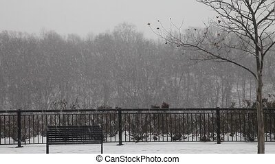 Heavy snow storm in the park, hd - Heavy snow storm in the...