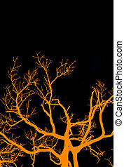 Halloween Tree - A graphic rendition of an old, gnarled tree...