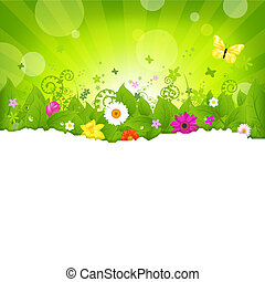 Nature Background With Flowers, Isolated On White...