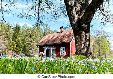 Swedish wooden house - Red swedish cottage in spring