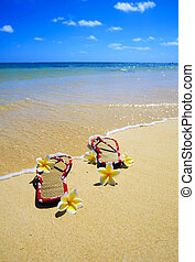 sandals and plumeria blossoms on a beach - pair of sandals...