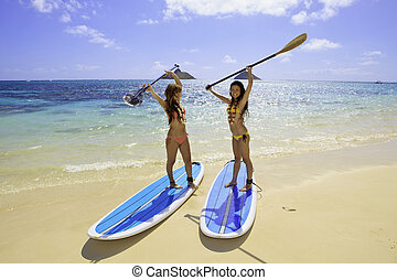 young Japanese women in bikinis with their paddle boards in...