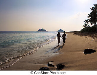 couple walking on a hawaii beach - silhouette of a couple...