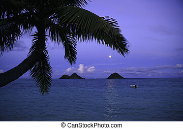 moonrise over the mokulua islands at lanikai, hawaii
