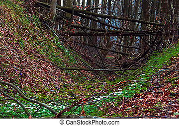 Early spring 1 - Somewhere in the forests of Jgheabu, near...