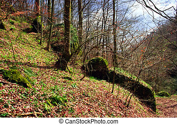 Early spring 14 - Somewhere in the forests of Jgheabu, near...