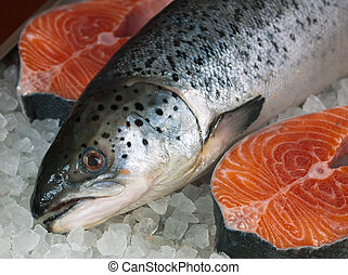 Fresh salmon - Fresh red fish on ice