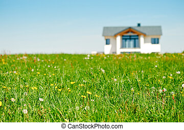 Meadow with Family House