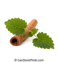 Cinnamon stick and fresh bergamot mint leaf isolated on...