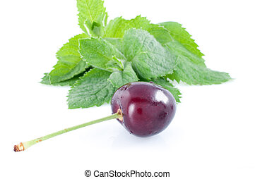 Fresh green spearmint and cherry - Fresh green mint and...