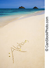 "The word ""aloha\"" - The word ""aloha"" is written on a sandy..."