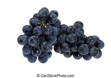 fresh picked concord grapes - isolated fresh picked concord...