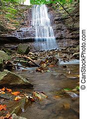 Sherman Falls With Creek