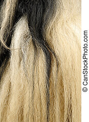 Yak hair texture - Closeup of textures and colors in Yak...
