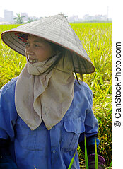Portrait a female peasant Vietnam - This woman works in the...