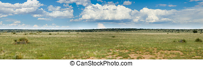 Grassy prairie of Texas - panorama - A panorama of a grassy...