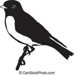 bluebird - silhouette of bluebird