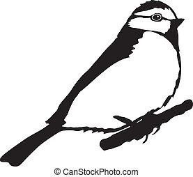 tit - silhouette of tit