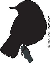 nightingale - silhouette of nightingale