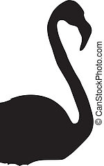 Flamingo - silhouette of Flamingo