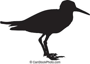 sandpiper - silhouette of sandpiper