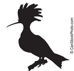 whoop - silhouette of whoop