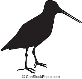 silhouette of snipe