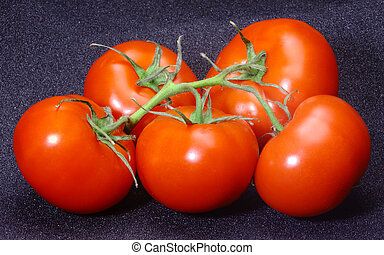 Flemish tomatoes. - Vegetables. Five Flemish tomatoes on a...