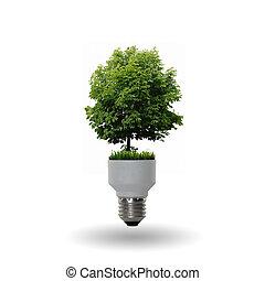 燈泡, 樹