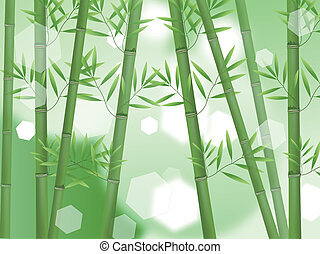 Abstract lucky bamboo forest