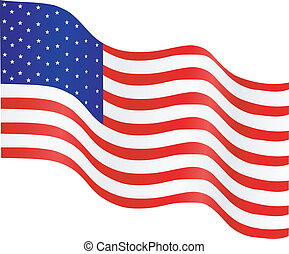 National flag of the USA on a white background. vector