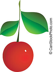 Cherry - Chery on a white background. vector