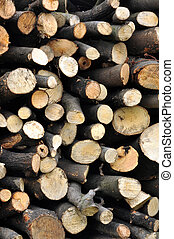 Biomass - A staple of biomass, arranged firewood