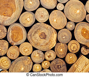teak - Background of dry teak logs stacked up on top of each...