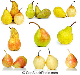 Set of different pears