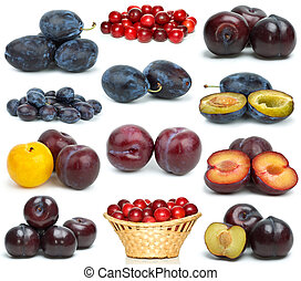 Set of different plums