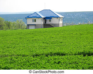 lonely living house in middle of green meadow