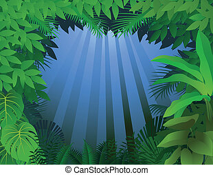 Tropical rain forest - Vector illustration of tropical rain...