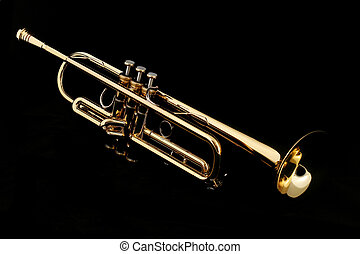 gold trumpet in night - gold lacquer trumpet with mouthpiece...