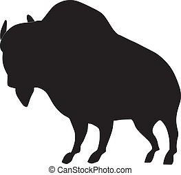 silhouette of African buffalo