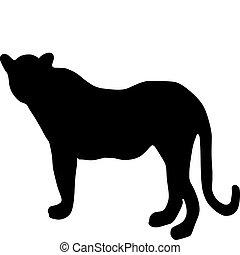 leopard - silhouette of leopard