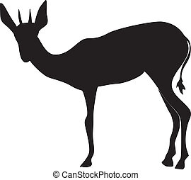 silhouette of an antelope