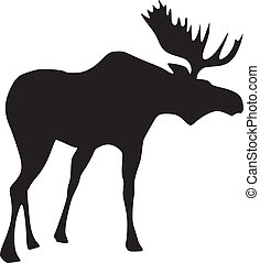 silhouette of moose