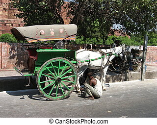 Cart near Red Fort in Agra, Uttar Pradesh, India