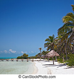 beach on the Isla Contoy, Mexico - beach with pier on the...