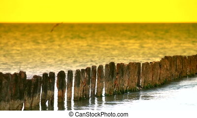 rusty piles into the sea - rusty piles of the old pier in...
