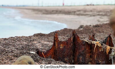 metal corrosion - remnants of a rusty pile on the beach