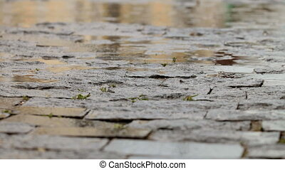 rainy cobbled road