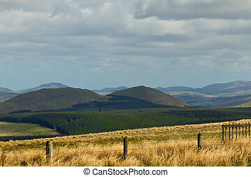 Scottish Border - The Cheviot hills marking the border...