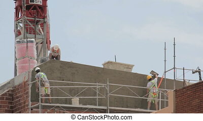 Construction Workers plastering a wall